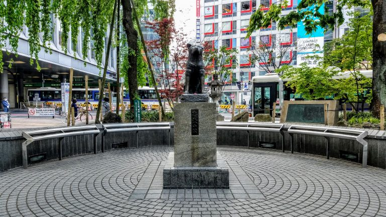 Hachiko Loyal Dog Statue at Shibuya
